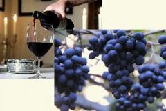Виноградный концентрированный сок