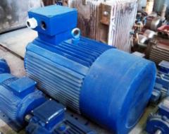 ACORUS electric motor 100 S2