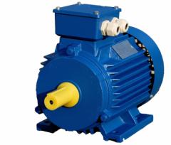 ACORUS electric motor 100 S4