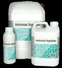 Аминомакс