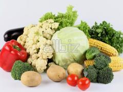 Vegetables fresh wholesale
