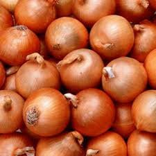 Onions for expor