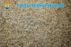 Salt technical for production needs