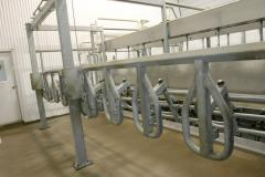 Milking DeLaval Champion™ hall of parallel type