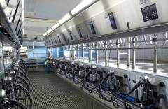 Milking DeLaval P2100 hall of parallel type
