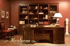 Office from Korleone tree under the size of the