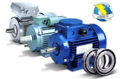 Electric motor 110 of kW of 1000 rpm