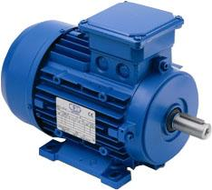 Electric motors with a brake