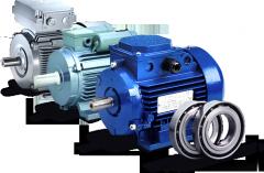 A4 electric motors