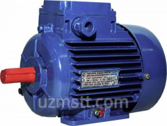 Electric motor low-voltage multi-speed