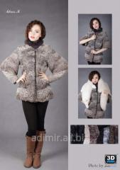 Female short fur coa