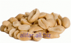 The peanut blanched - fried, fraction: 47/57,