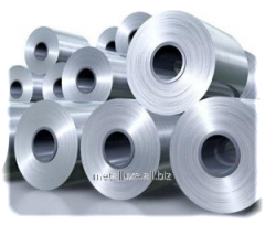 Rolling steel hot-rolled rolls
