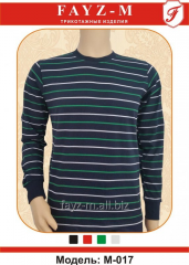 T-shirt man's with long sleeves and color