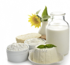 Equipment for production of yogurt, cream and