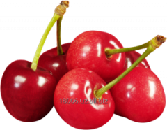 Sweet cherry Season of collecting: May-July