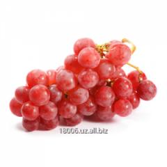 Тайфи виноград Сезон сбора: январь,