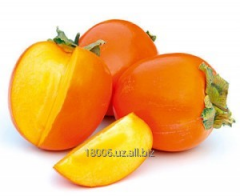 Persimmon Season of collecting: January,