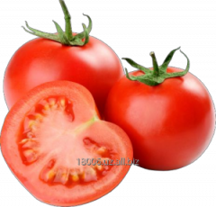 Tomatoes Season of collecting: May-June,