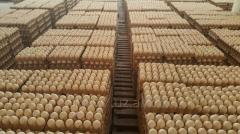Яйца столовые сорт D1