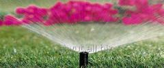 Rain Bird Spray sprinkler que salta