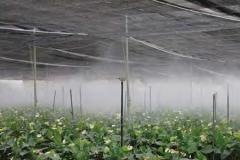 معدات لحماية النباتات والري