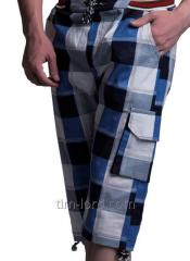 Shorts x / Arth: TL1056