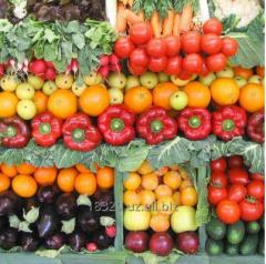 Овощи свежие на экспорт