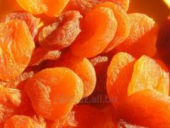 Dried apricots for expor