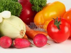 Fresh vegetables from Uzbekistan