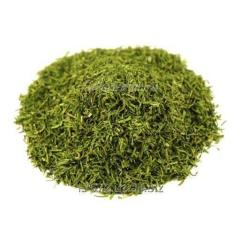 Greens dried expor