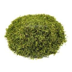Greens dried expor