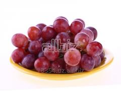 Grapes of Tayfi