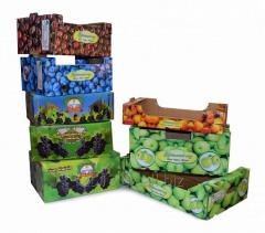 Box for dried fruits