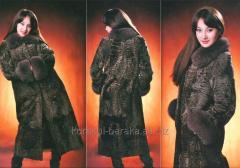 波斯羔羊大衣