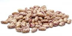 Pointed red beans, premium grade