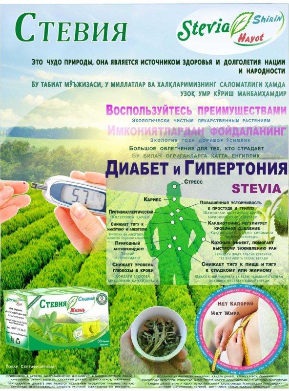 steviya_shirin_haet