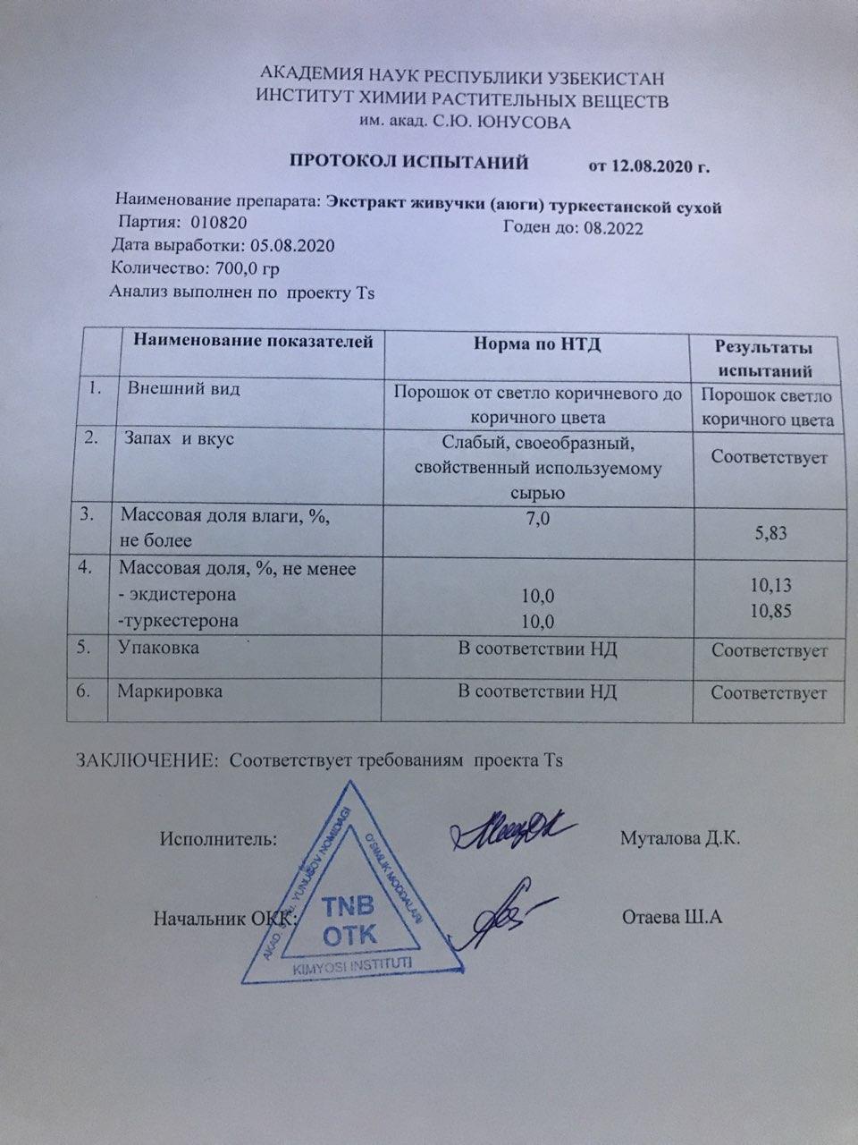 ayuga_turkestanskaya