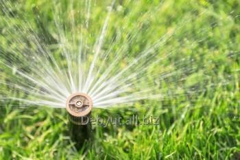 rain_bird_spraj_sprinkler_vyskakivayushchij