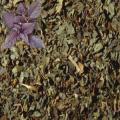 Базилик (райхон) сушеный