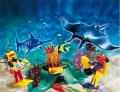 Дайверы в тропических рифах