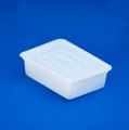 Container of food 1000 ml