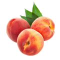Peach Season of collecting: June-October
