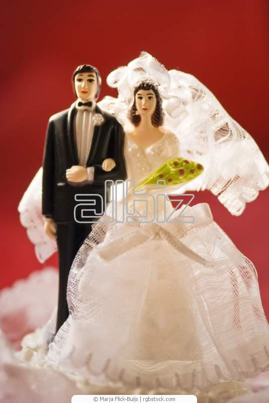 Заказать Дополнительные свадебные услуги