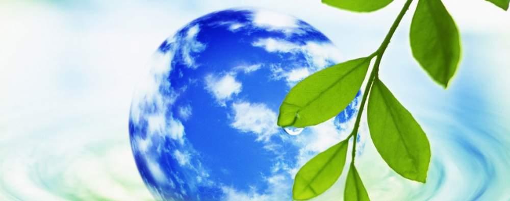Заказать Разработки экологических проектов и природоохранной документации.
