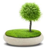 Заказать Разработка экологических проектов