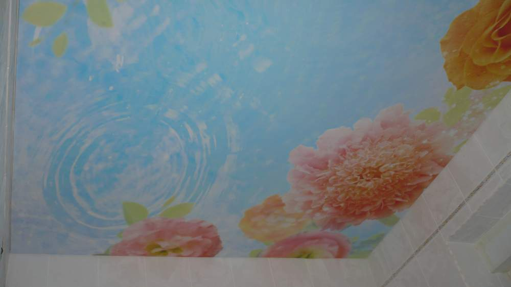 Цветы на потолке