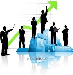 Организация и управление бизнесом