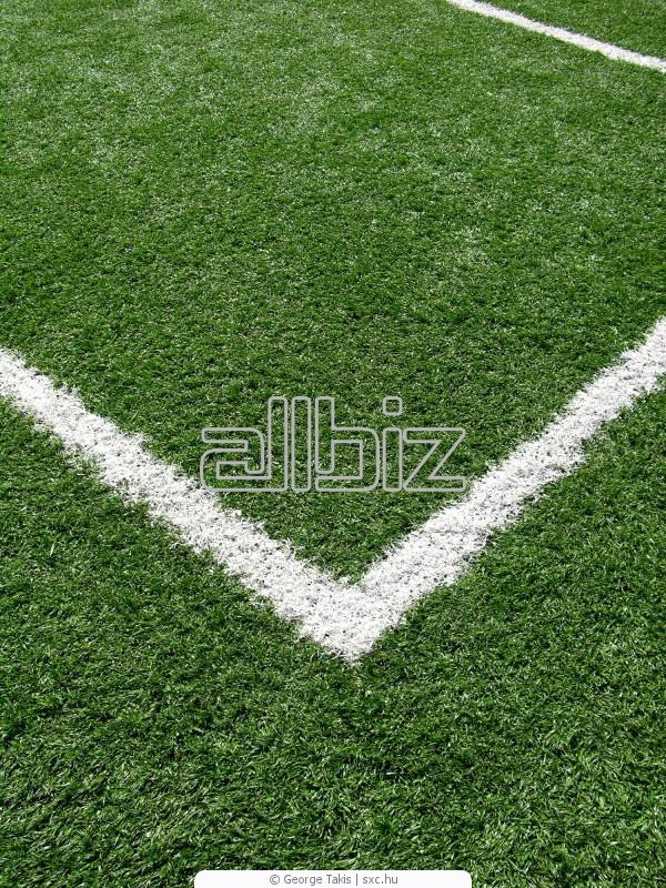 Заказать Строительство спортивных площадок