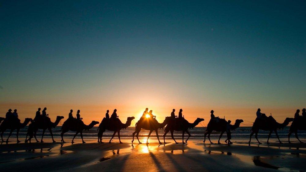 Заказать Организация туров по Узбекистану. Интересные программы на любой вкус! Индивидуальное расписание для каждого гостя в зависимости от Ваших интересов!